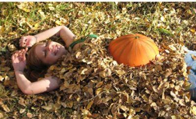 pumpkin-belly