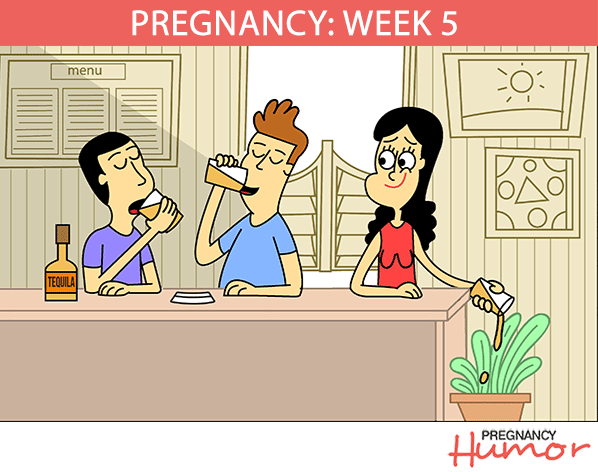 Pregnancy Week 5 Comic