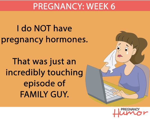 Week 6 Comic Pregnancy Humor
